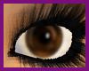 {F} True Brown Eyes