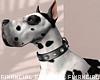 Great Dane Guard Dog