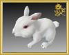Bunny Shoulder Pet