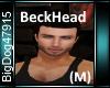 [BD]BeckHead(M)