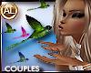 COUPLES HUMMINGBIRDS KIS
