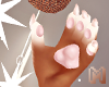 🅜 BONBON: claws paw