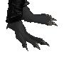 Black Dragon Feet