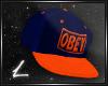 |L| OBEY BLUE/ORANGE