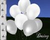 White Balloons anim