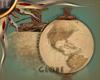 (IL) Globe