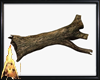Log tree Poses