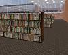 Library Bookshelf 3