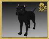 Pit Bull Pet Black