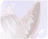 Nyx | Ears 2