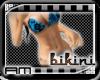 [AM] Bikini Circle Blue