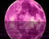 Pink Moonlight Room