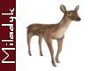 MLK Animated Doe(Deer)