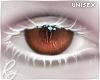 Inu Reg. Brown Eyes