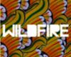 SBTRKT - Wildfire