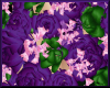 Fairy Flowers Purple Skt
