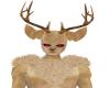 deer furry M shouldr fur