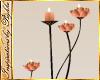 I~Isle Rose Candles