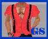"""""""GS"""" OLD SHIRT #1 DRV"""