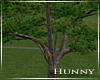 H, Tree