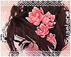 Hair Lilies |Pink
