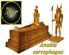 Anubis sarcophagus