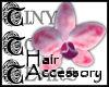 TTT Pink Orchid L