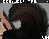 v. Dog/Wolf Tail: Eva