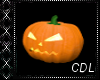 !C* T Pumpkin Kiss II