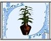 Beautiful Brown Plant