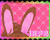 IRPB~TattyTeddyEarsV2