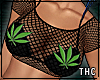 fishnet / weed /ga