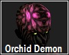 Orchid Demon No Hair