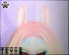 Tiv| Rin Ears (M/F) V1