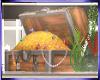 Mz. Fish tank chest/anim