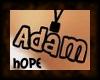Adam Necklace