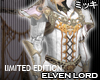 ! Elven Lord Coat IV