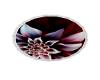 Burgundy Floral Rug