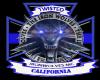 twi california banner