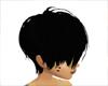 *ZB* Short Hair Black