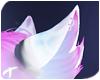 Luna | Ears 3