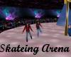Roller Skateing Arena