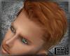 C79| Swept Ginger Hair