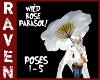 WILD ROSE PARASOL!