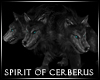 ! The Spirit of Cerberus