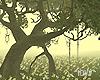 "Iv""Big tree"