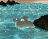 WD eiland blue white