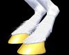 M* Male White Horse Feet