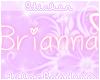 Brianna Nametag