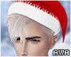 擾 Santa White
